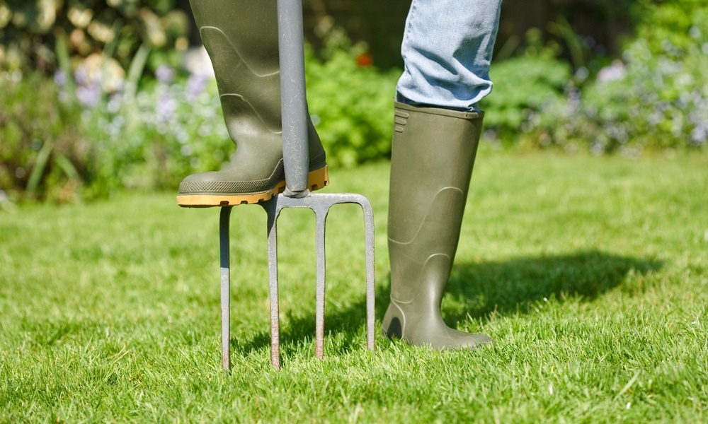 7-tips-for-a-great-summer-lawn