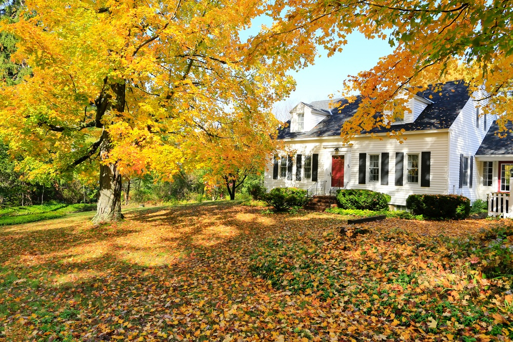 almost-time-for-fall-and-landscape-debris-removal-chores