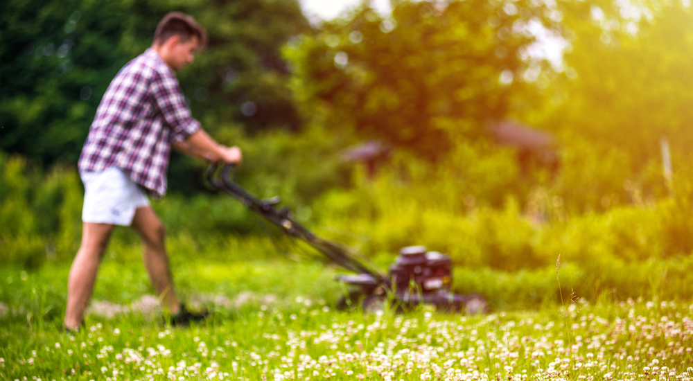 how-to-keep-yard-waste-removal-simple-checklist