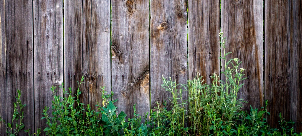when-your-backyard-fence-can-no-longer-stand-up-1
