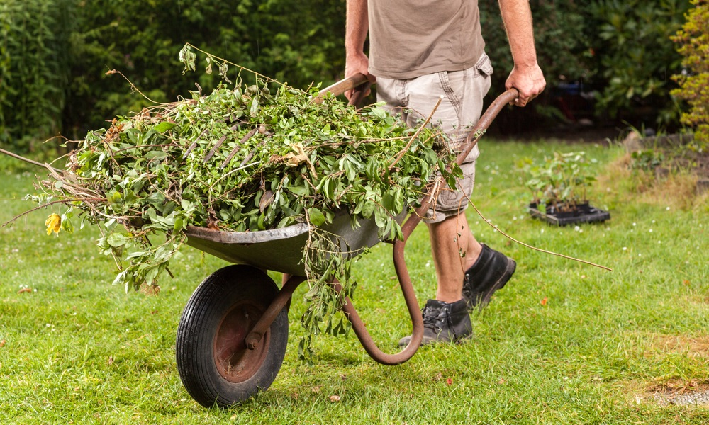 cleaning-up-your-outdoors-after-winter