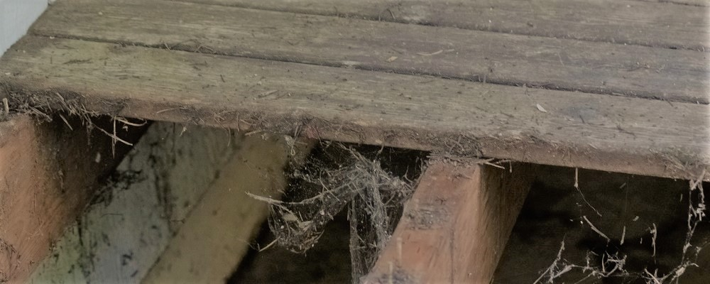 when-your-backyard-deck-can-no-longer-hold-up-1