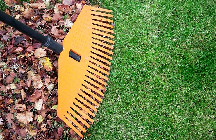 fall-lawn-care-and-debris-removal