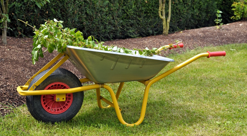 fall-landscaping-and-yard-waste-removal