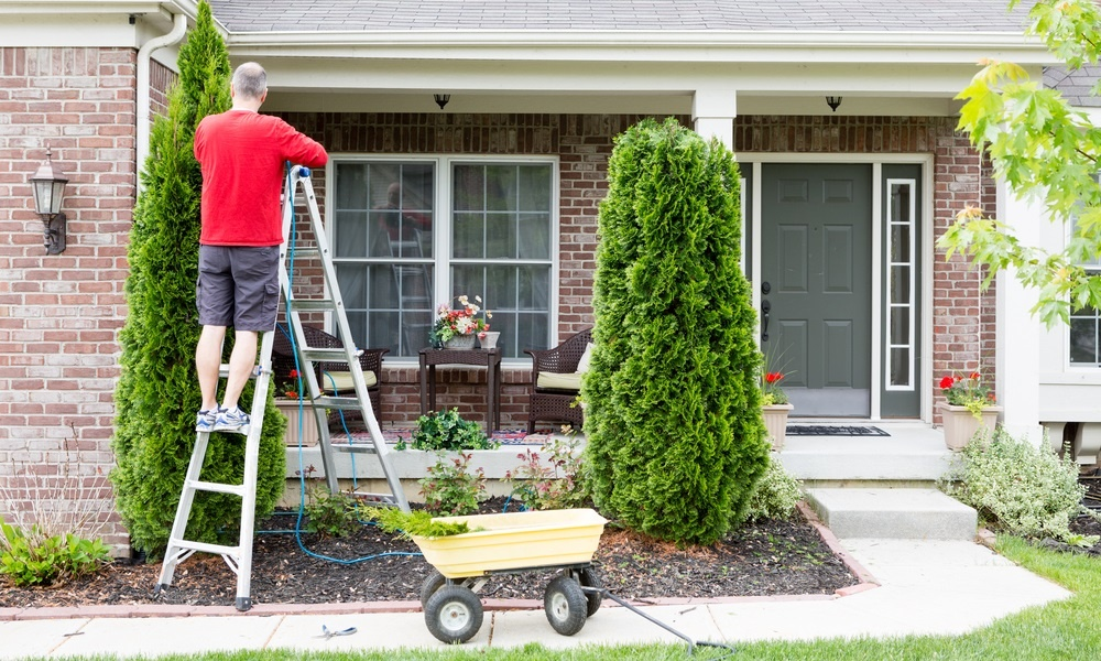 10-landscaping-projects-on-a-budget