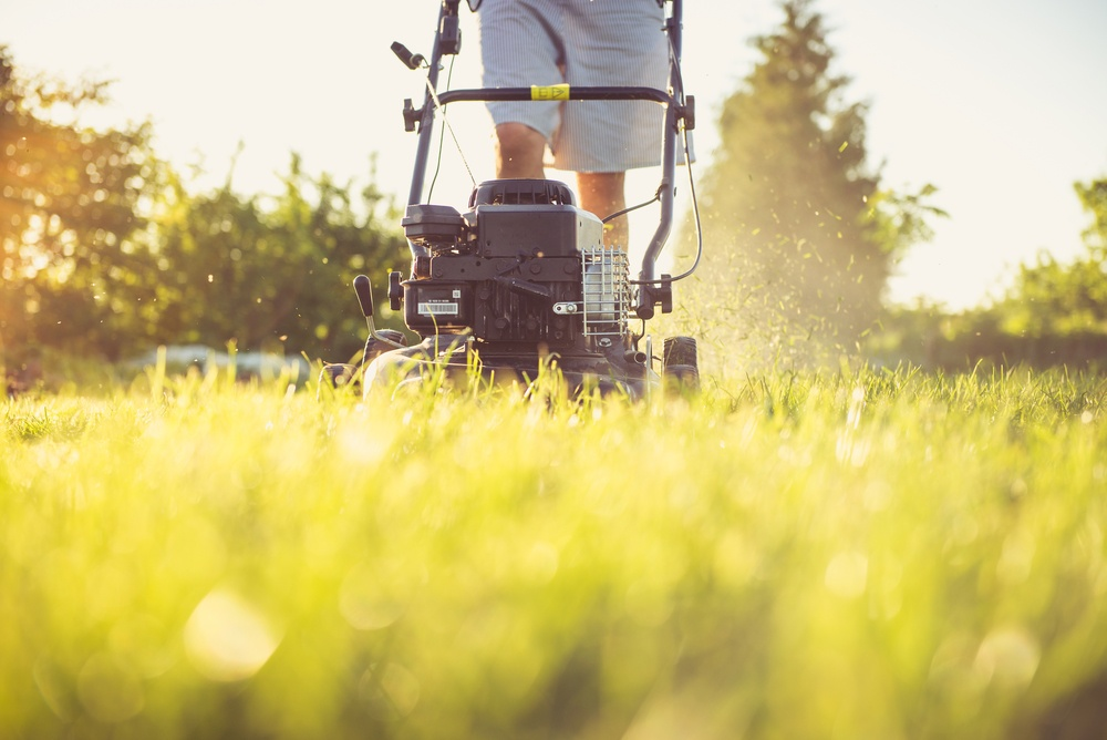 spring-cleaning-your-yard-area-and-recycling
