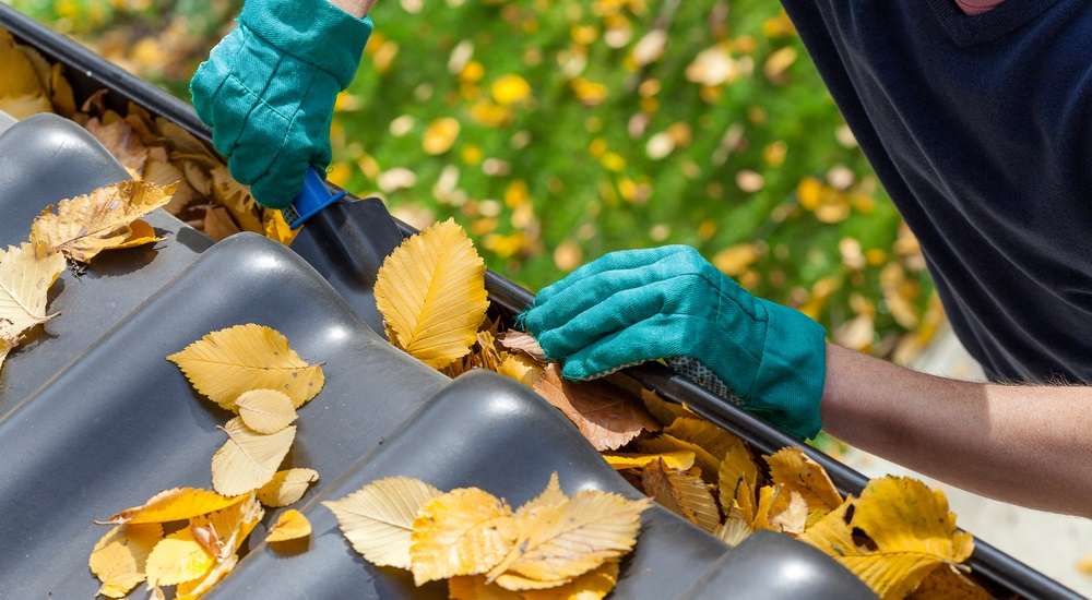 fall-lawn-and-yard-preparation-are-you-ready