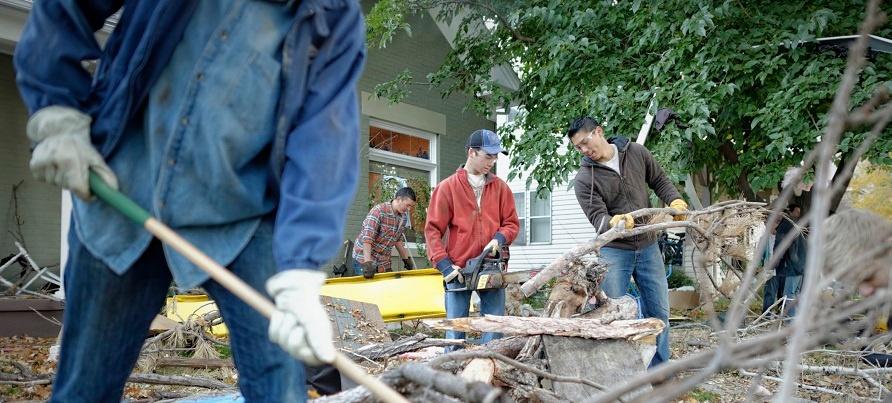 cleaning-up-tree-limbs-1176686-wallpaper.jpg