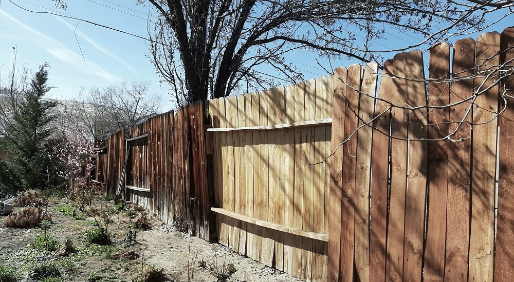 when-your-backyard-fence-can-no-longer-stand-up