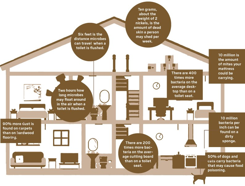 home-disinfecting-info