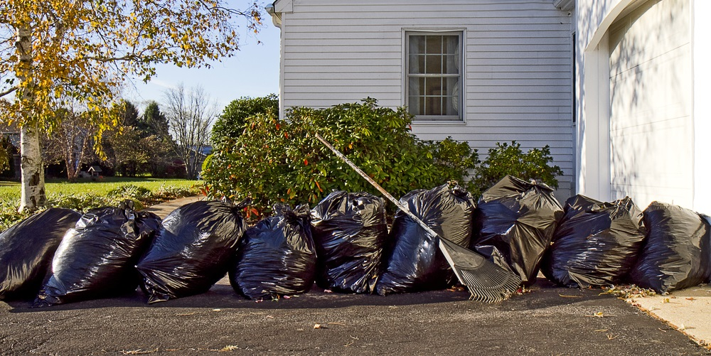 It's Time For Your Spring Yard Cleanup